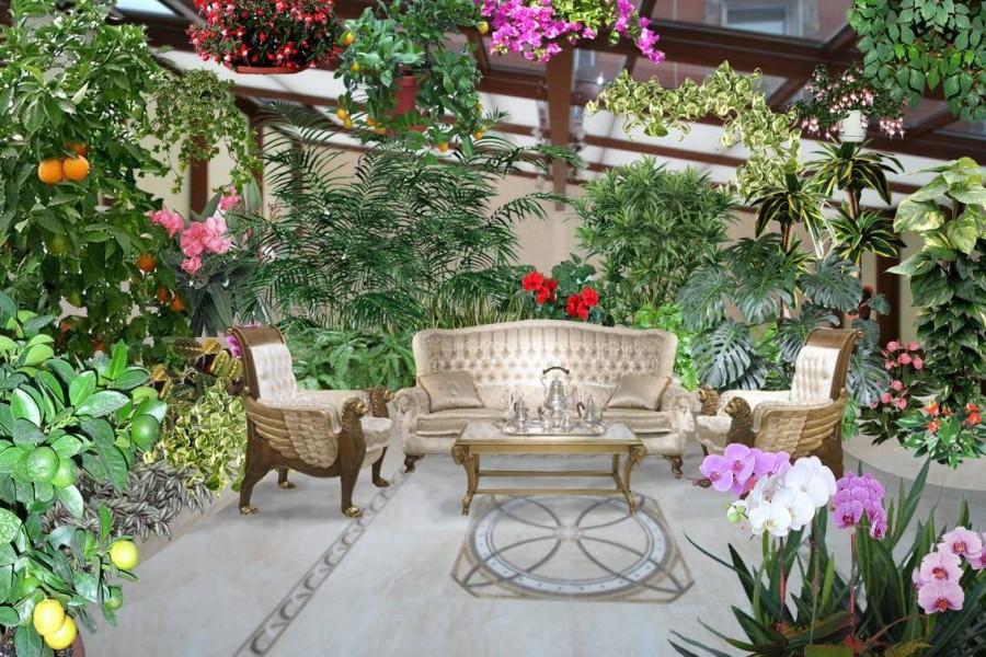 Потолок в зимнем саду